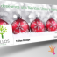 Holiday Season Facebook Covers Package